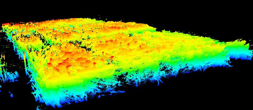 三維激光掃描儀在農林業中的應用,三維激光掃描儀在農林業保護中的應用,麥田點雲(按照植物高矮顔色渲染)展示
