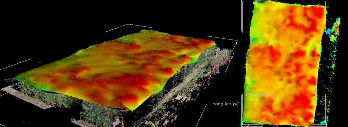 三維激光掃描儀在農林業中的應用,三維激光掃描儀在農林業保護中的應用,麥田植株高度平整度展示圖