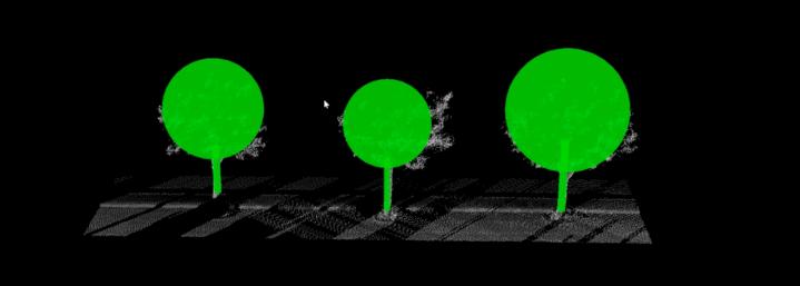 三維激光掃描儀在農林業中的應用,三維激光掃描儀在農林業保護中的應用,單科樹木自動識别成果展示圖