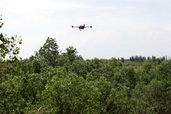 旋翼無人機應用于林業巡檢及森林防火